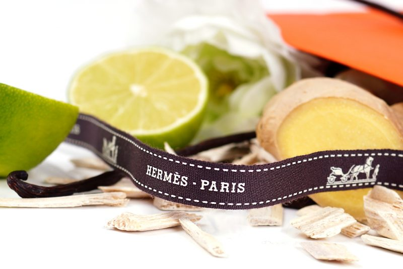 <span style='font-size: large;'>Hermès Paris </span><br />Twilly d'Hermès
